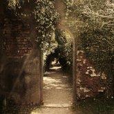 secret-garden-garden